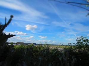 TempelhoferFeld_FotoTempelhoferBerg