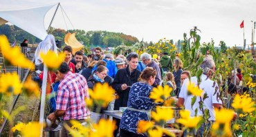 Garten-Projekte für freies Tempelhofer Feld